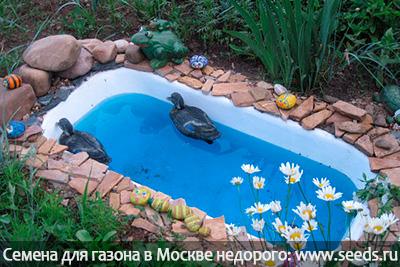Как сделать декоративный пруд на даче своими руками? Мини-пруд на участке.