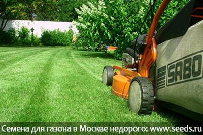 вычесывание газона газонокосилкой