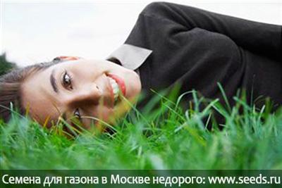 газон, который не надо стричь, не надо косить, газонная трава для ленивых, семена газонных трав купить в Москве.